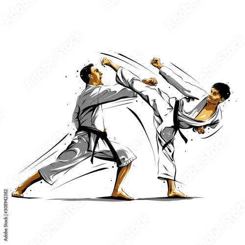 Obrazy Karate   karate-action-10