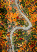 Twist In The Road In Autumn
