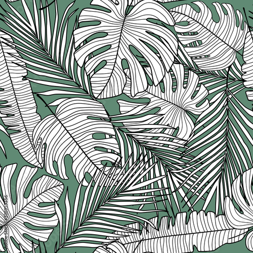 seamless-pattern-with-monstera-line-leaves-on-green-background