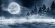 Leinwanddruck Bild - Dark winter forest background at night. Snow, fog, moonlight. Dark neon night background in the forest with moonlight. Neon figure in the center. Night view, magic.