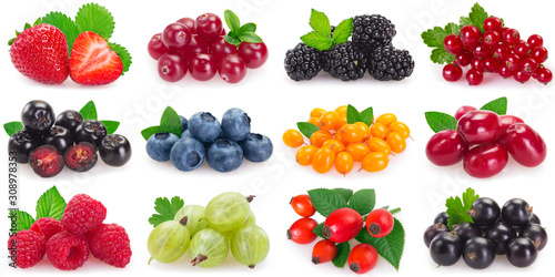 Obraz Collection of fresh berries on white background - fototapety do salonu