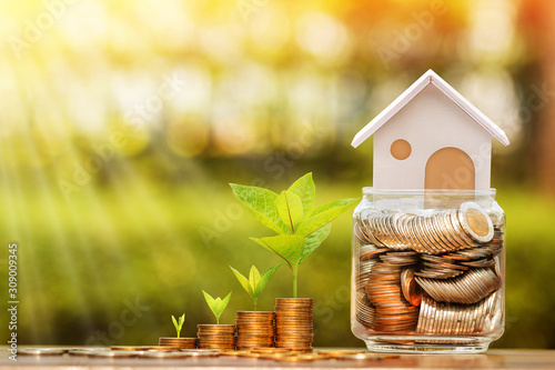 Fototapeta Stack coin and tree with growing and home put on the money in the jar bank for family put on the wood in the public park, Saving for buy house and real estate or loan for business investment concept. obraz