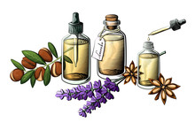 Essential Oil Bottle Vector Se...