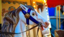 Horse Closeup For Carousel Ride