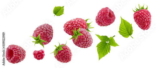 Foto Raspberry isolated on white background