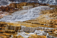 Minerva Terrace At Mammoth Hot Springs, In Yellowstone National Park