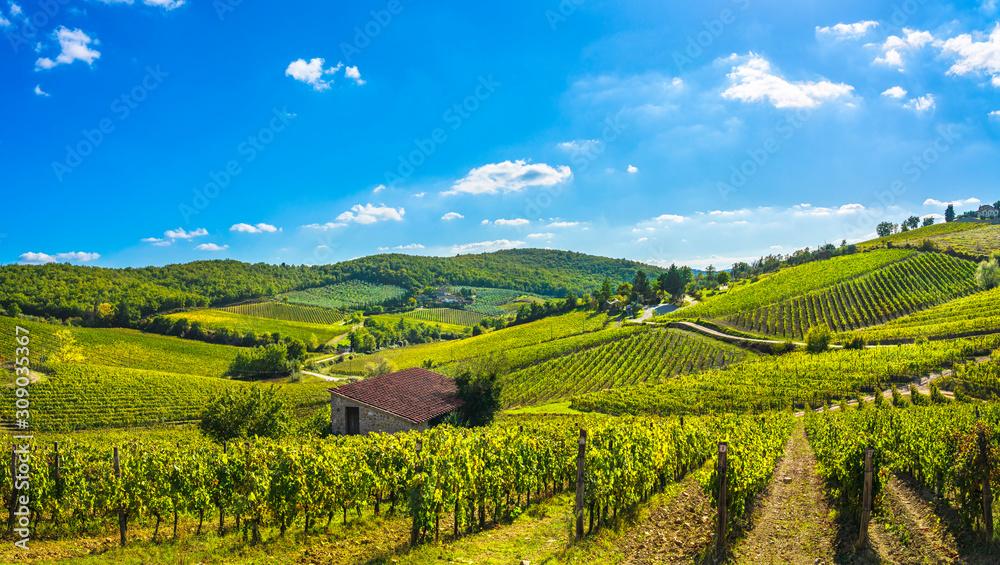 Fototapeta Radda in Chianti vineyard and panorama at sunset. Tuscany, Italy
