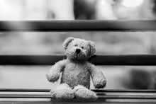 Black And White Photo Of Teddy Bear With Sad Face Sitting On Wooden Beance , Lonely Teddy Bear Sitting Alone Outside In Gloomy Day, Lonely Concept, International Missing Children's Day.