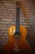 alte Gitarre an Steinmauer