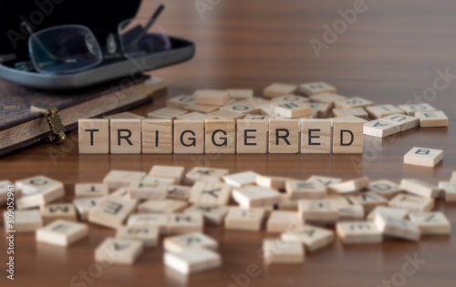 Photo triggered the word or concept represented by wooden letter tiles