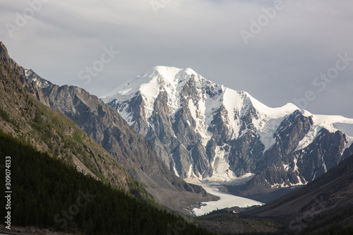 altai snow mountain and forest Canvas Print