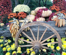 Flower Garden Decoration With Wagon Wheels And Fruit