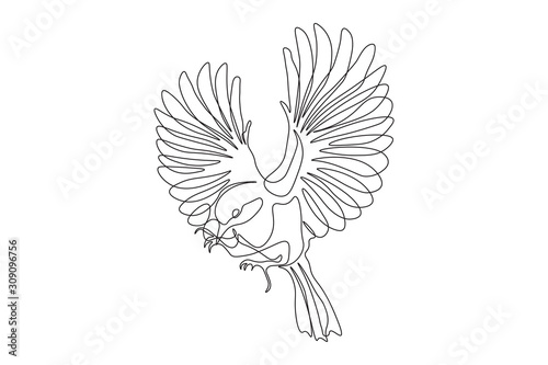 Fotomural Continuous one line, drawing of birds hand-drawn, simple lines, illustration, lo