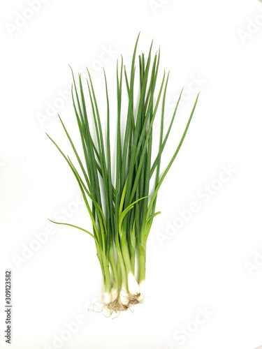 green onion isolated on white background Poster Mural XXL