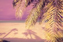 Dead Sea Shore In The Evening....