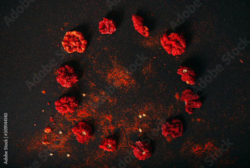 Red spicy dry carolina reaper. Dark food photography. Copy space. Wallpaper Mural