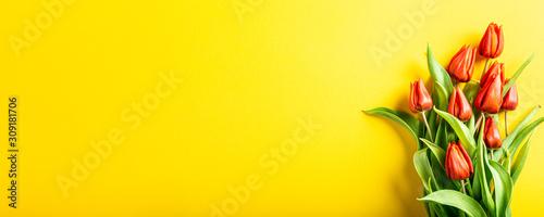 Fotografie, Obraz Orange tulips over yellow background, Easter