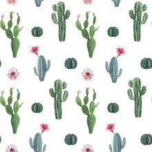 Beautiful Vector Watercolor Cactus Seamless Pattern. Hand Drawn Stock Illustrations. White Background.
