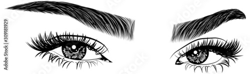 Obraz na plátne Illustration with woman's eyes, eyelashes and eyebrows
