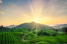 Beautiful Moment During Sunris...