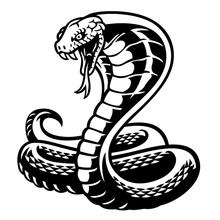 Cobra Snake Tattoo Style In Bl...