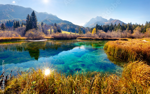 fototapeta na lodówkę Picturesque autumn scene of Julian Alps with Kranjska gora peak on background. Wonderful morning view of Zelenci nature reserve, Slovenia, Europe. Beauty of nature concept background.