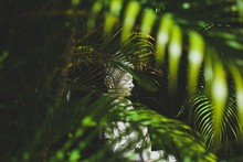 Closeup Of A White Female Asian Sculpture Among The Leaves Of Exotic Plants