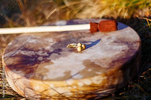 shamanic drum in nature, shamanic drum with magic mushrooms.