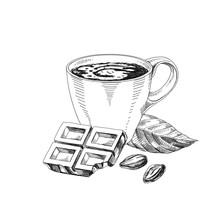 Cup Of Hot Chocolate Hand Drawn Vector Illustration