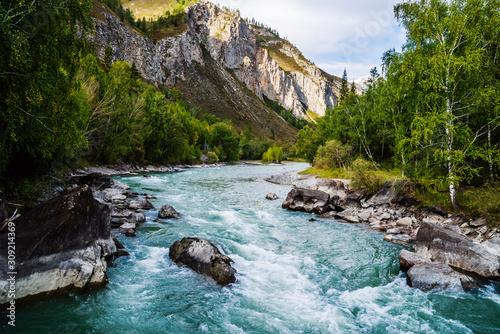 Fototapeta Behemoth River Rapid on the Chuya River, Mountain Altai, Russia obraz