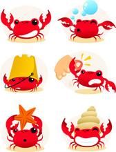 Crab Cartoon Set