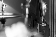 Upright Bass Black And White