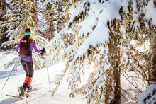 A Woman Is  Hiking Wearing Snowshoes In Cedar Breaks National Monument.