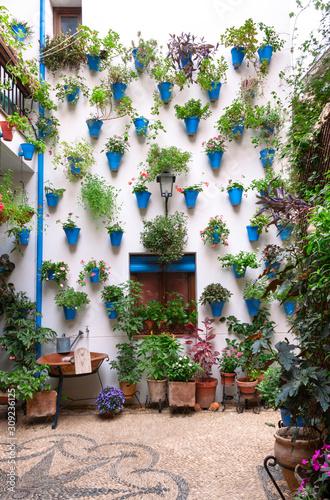 Preciosa fachada de patio andaluz decorada con plantas colgadas de la pared en macetas azules y repartidas sobre suelo de piedra con mosaico. Córdoba, Andalucía, España. Viajes y turismo.