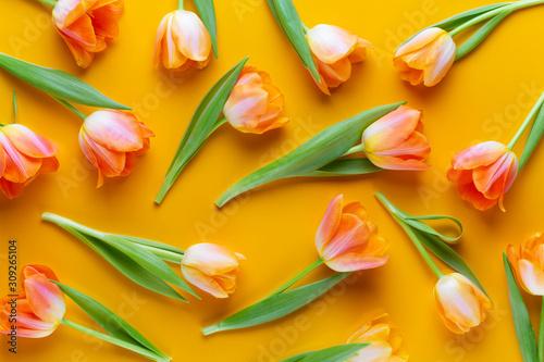Fototapeta Yellow pastels color tulips on the yellow background. Retro vintage style. obraz