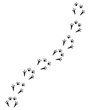 Vector Black Flat Frog Foot Print Path Isolated On White Background