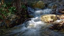 Foamy River Rushing Through Th...