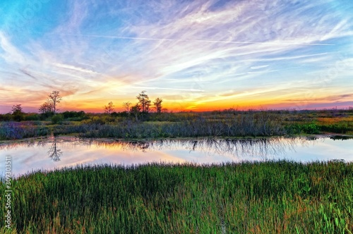 Louisiana swamp sunset and silhouettes Canvas Print