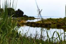 View Ofmalibu Lagoon State Park Bird Santuary