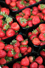 Natural Organic Strawberries I...
