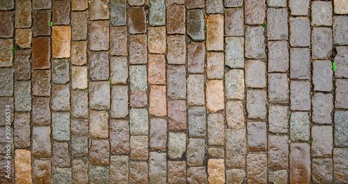 Fotomural wet stone paving stone tiles after rain