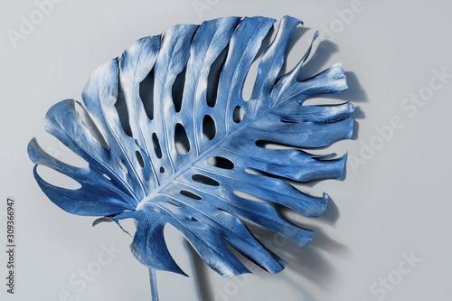 classic-blue-tropical-palm-leaf