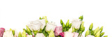 Bunch of pink and white eustoma flowers on white background, banner.