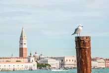 Blur View Of Doge Palace, Camp...