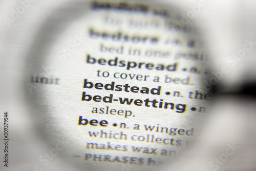 The word or phrase Bedstead in a dictionary. Canvas Print