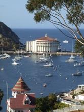 Catalina Island 020