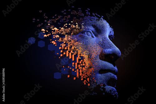 Abstract digital human face Wallpaper Mural