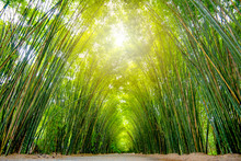 Asia Thailand, At The Bamboo F...