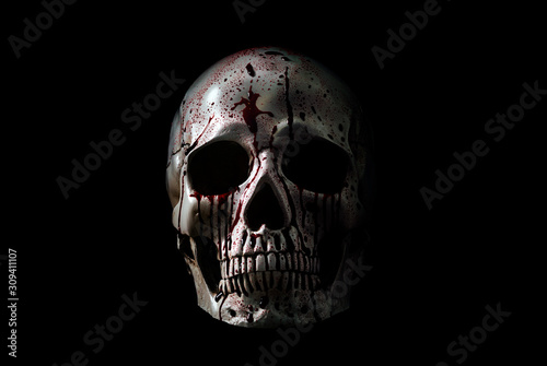 Human skull in blood isolated on black background with clipping path Wallpaper Mural