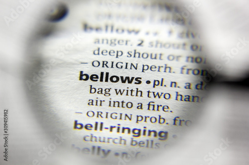 The word or phrase bellows in a dictionary. Canvas Print